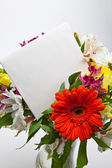 Flowers and Card — Stock Photo