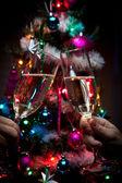 Holiday Toast — Stock Photo