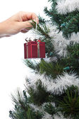 Hanging Ornaments — Stock Photo
