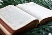 Bible with Palms — Stock Photo