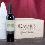 Wine Bottles — Stock Photo #48628073