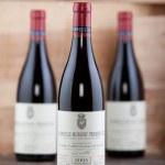 Wine Bottles — Stock Photo #48628097