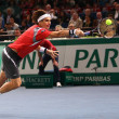 David Ferrer on the BNP Paribas Masters court — Stock Photo #45833605