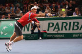 David Ferrer on the BNP Paribas Masters court — Stock Photo