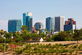 Phoenix, Arizona — Stock Photo