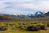 Eastern Sierra Mountains — Stock Photo