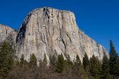 Yosemite National Park California — Stock Photo
