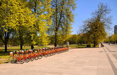 Bicycles row in city center — Stock fotografie