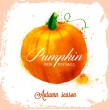 Vector pumpkin pattern — Vettoriale Stock