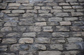 Cobblestone path — 图库照片