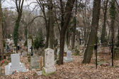 View on the old and  dark graveyard — Stock Photo