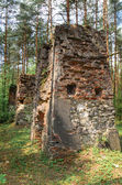Remnants of old and destroyed buildings in forest — Stock Photo