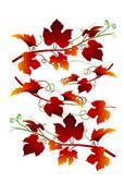 Grape  leaves in autumn — Stockvektor