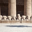 Stock Photo: Egypticolumns and sculptures