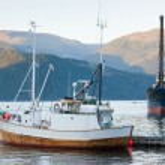 bateaux de pêche dans la baie — Photo #40785773