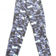 Stock Photo: Clothes Camouflage pants