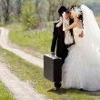 Kissing wedding couple — Stock Photo #40787873