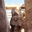 Egyptian statues — Stock Photo