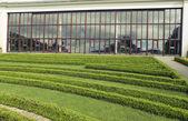 Green lawn near building — Stock Photo