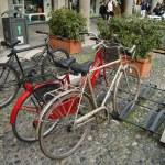 Bicyle — Stock Photo #42233633