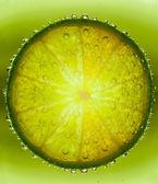 Lime — Zdjęcie stockowe