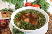 Vegetables fundus-soup — ストック写真