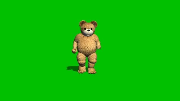 Dibujos animados oso corre al revés - verde pantalla — Vídeo de stock