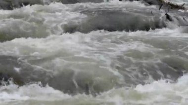 Turbulent Rapids River Stream — Stock Video