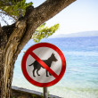 Dogs banned from beach sign. — Stock Photo #41003871