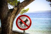 犬サイン ビーチから禁止されて. — ストック写真