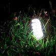 Energy-saving lamp in green grass. — Stock Photo #41055685