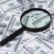 Money and a magnifying glass — Stock Photo #41060397