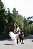 Girl riuning with dogs — Stockfoto