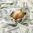 A golden egg on american dollars — Stock Photo #41148943