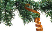 Christmas Tree with  golden ribbon — Stock Photo