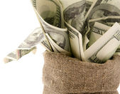 Canvas money sack — Stockfoto