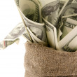Stockfoto: Canvas money sack with one hundred dollar bills