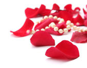 Fine pearl beads and red roses petals — Stock Photo