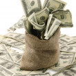 Stock Photo: Money sack with one hundred dollar