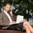 Businesswoman  in park and working on laptop — Stock Photo #41197255