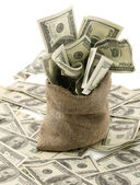 Money sack with one hundred dollar — Stockfoto