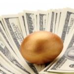 A golden egg on dollars — Stock Photo #41202189