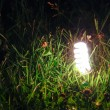 Energy-saving lamp in green grass. — Stock Photo #43126231