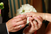 Bride and a groom, a man putting a ring — Stock Photo