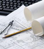 Lápis, divisores e planta em um laptop — Foto Stock