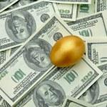 Golden egg on american dollars — Stock Photo #43180453
