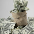 Canvas money sack with one hundred dollar bills — Stock Photo #45344611