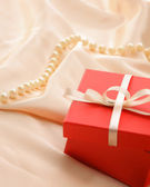 Gift. — Stock Photo