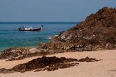 Sea scape and the boat — Stock Photo