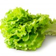 Fresh Green Lettuce — Stock Photo #41096225